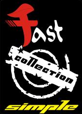 logo fast